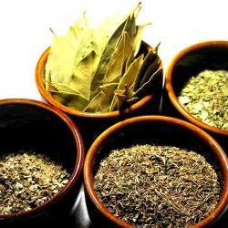 Spring Time Lemon Verbena, White Tea & Citrus Tea Blend